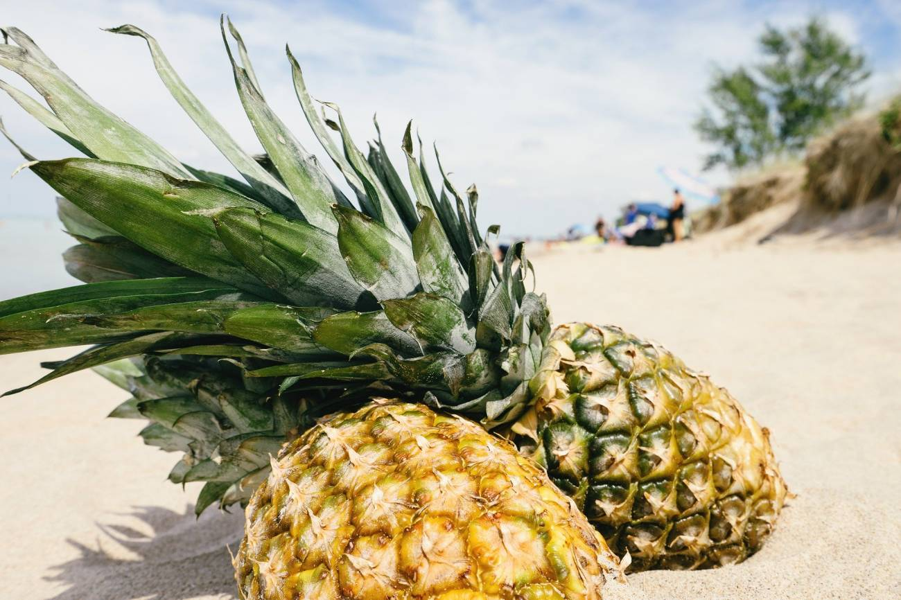 Właściwości i zastosowanie ananasa